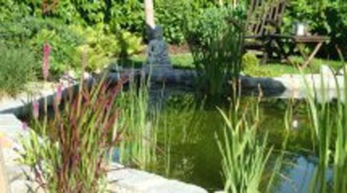 gartenteich mit sonnensegel für den teich, Hause und Garten