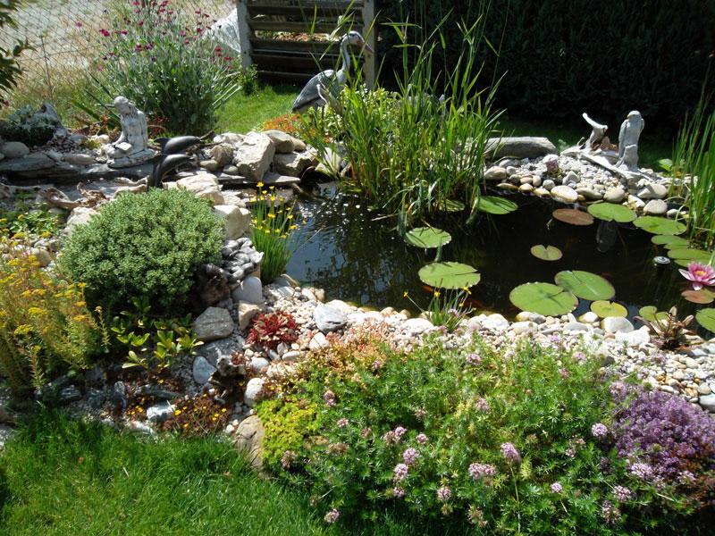 Teich mit steinfiguren for Fische im naturteich