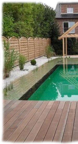 Schwimmteich for Ratgeber teichbau