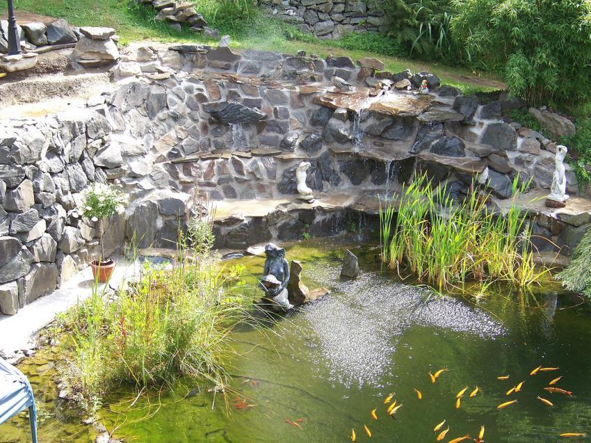 Fischteich Anlegen unser naturteich. angelegt im sommer 2011. den aushub hat ein